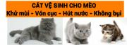 cat-ve-sinh-meo