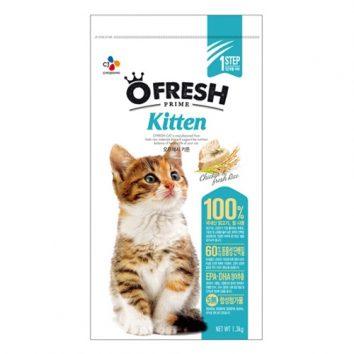 thuc-an-cho-meo-ofresh-kitten