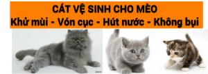 cat ve sinh meo 300x108 - Giới thiệu VinPet.net