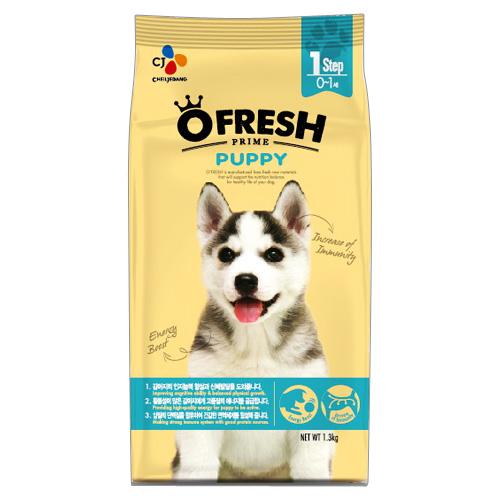 TOP 6+ loại thức ăn dinh dưỡng nhất cho chó Thuc-an-cho-