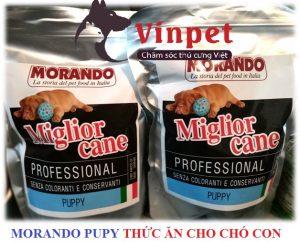 THUC AN CHO CHO CON MORANDO PUPY 300x242 - Điểm danh những loại thức ăn cho chó poodle?